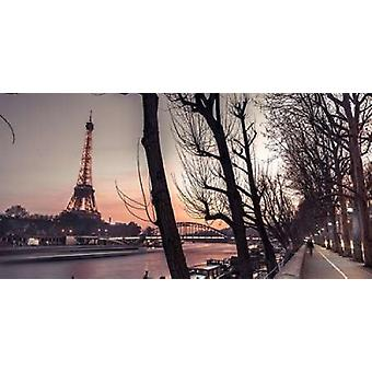 Row of trees the river Seine and the Eiffel tower at dusk Poster Print by  Assaf Frank