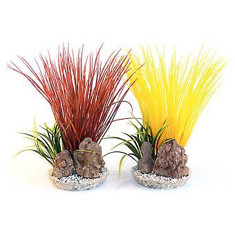 Sydeco Coloured Plants With Rocks Acorus Colour Rock 25cm (Pack of 8)