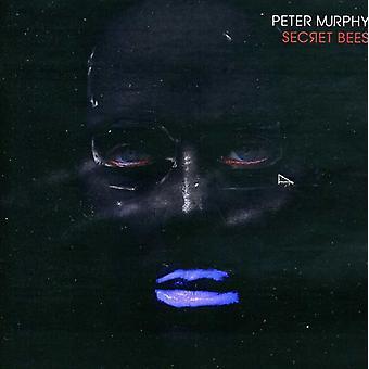 Peter Murphy - Secret bier af niende [CD] USA import