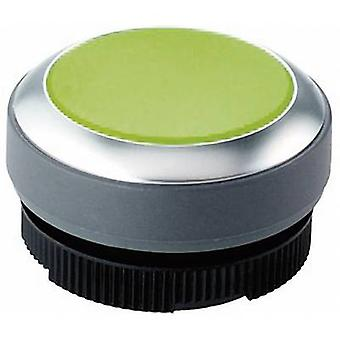 Pushbutton planar Green RAFI RAFIX 22 FS+ 1.30.270.021/2500 1 pc(s)