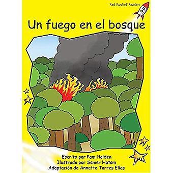 Un Fuego En El Bosque