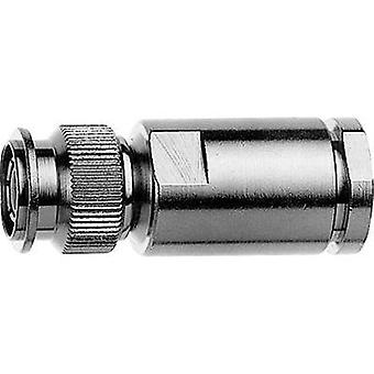 TNC connector Plug, straight 75 Ω Telegärtner J01012A0001 1 pc(s)