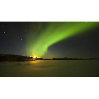 Ljusa aurora borealis över sjön Laberge Yukon territoriet Kanada affisch Skriv