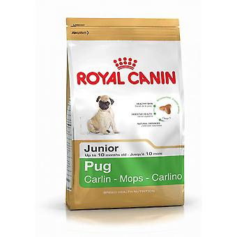 Royal Canin Pug Junior, Pug Dog Puppy Dry Food 1.5kg