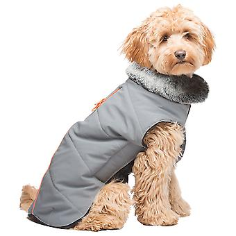 Dog Gone Smart Abrigo Impermeable Tamarack Meteor (Dogs , Dog Clothes , Coats and capes)
