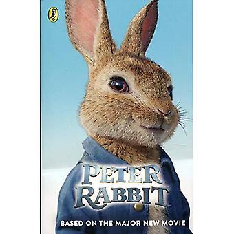 Piotruś królik: W oparciu o głównych nowego filmu (Paperback)