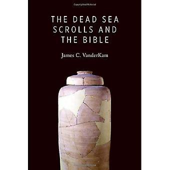 La mer morte et la Bible