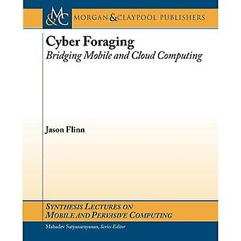 Cyber Foraging