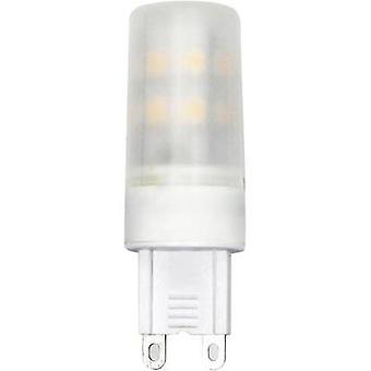 LED G9 pluma 3.4 W = 32 W Warm white (Ø x L) 18 mm x 57 mm EEC: base-congelador a ++ LightMe 1 PC