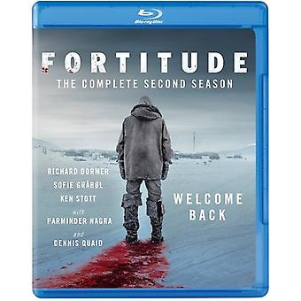 Fortitude: Season 2 [Blu-ray] USA import