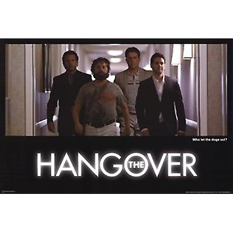 The Hangover - Who Let The Dogs Out Poster Poster Print