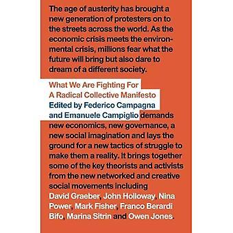 Vad vi kämpar för: En radikal kollektiva Manifesto