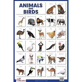 Animals & Birds by Pegasus - 9788131932896 Book