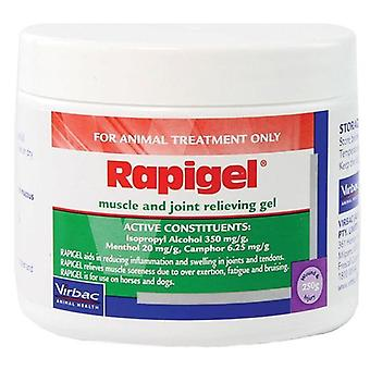 Rapigel 250gm Jar