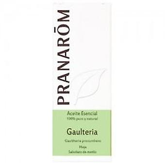 Pranarom Wintergreen Essential Oil 10Ml.