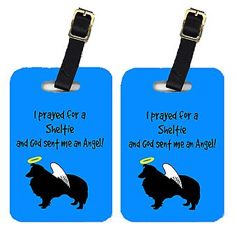 Carolines Treasures  AN1148BT Pair of 2 Sheltie Luggage Tags
