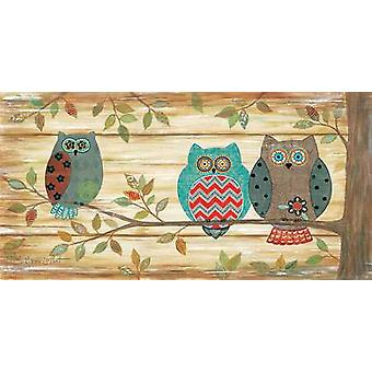 Three Wise Owls Poster Print by Annie LaPoint (18 x 9)