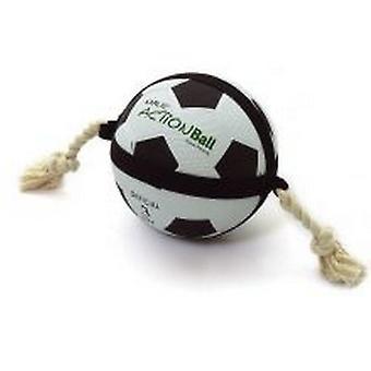 لعبة كرة القدم أكتيونبال الكلب