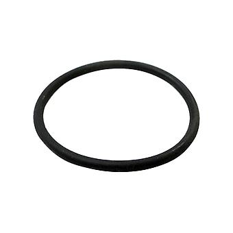 Aqua-Flo 91431050 O-Ring Only For 1-1/2