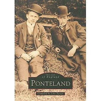 Ponteland (Arkiv fotografier: billeder af England)