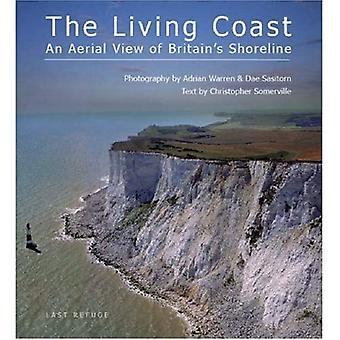 De kust leven: Een luchtfoto van Engelands kustlijn