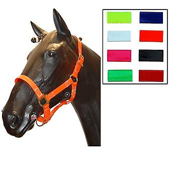 Biothane English Bridle  Boca Libre  Blue