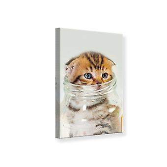 Canvas Print Folded Ears Kitten