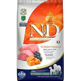 Farmina N&d Grain Free Pumpkin Adult Medium-Maxi Lamb & Blueberry
