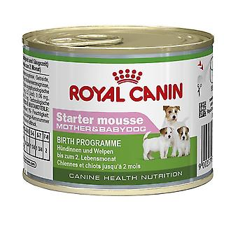 1 x Royal Canin Wet Starter Mousse for dog puppies
