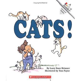 Katter!