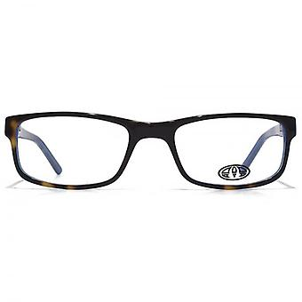 Animal Ashton Rectangle Acetate Glasses In Tortoiseshell On Blue