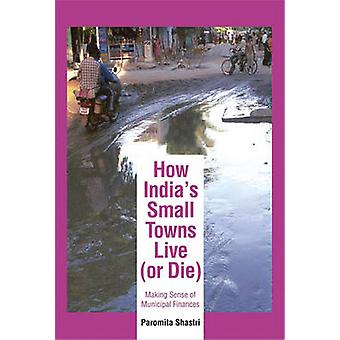 How India's Small Towns Live (or Die) - Making Sense of Municipal Fina