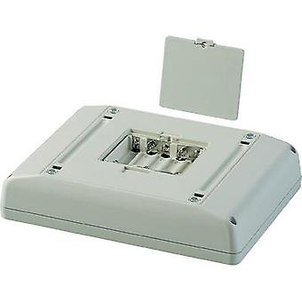 OKW Interface Terminal D4044137 Multifunction Electronic Enclosure, Off-White RAL 9002, 166 x 225 x 48 mm