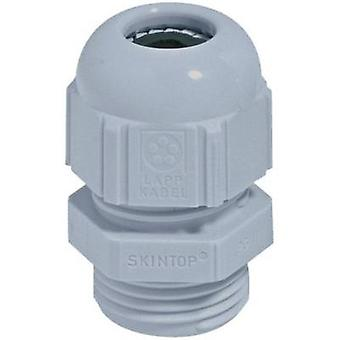 Cable gland PG21 Polyamide Silver-grey (RAL 7001