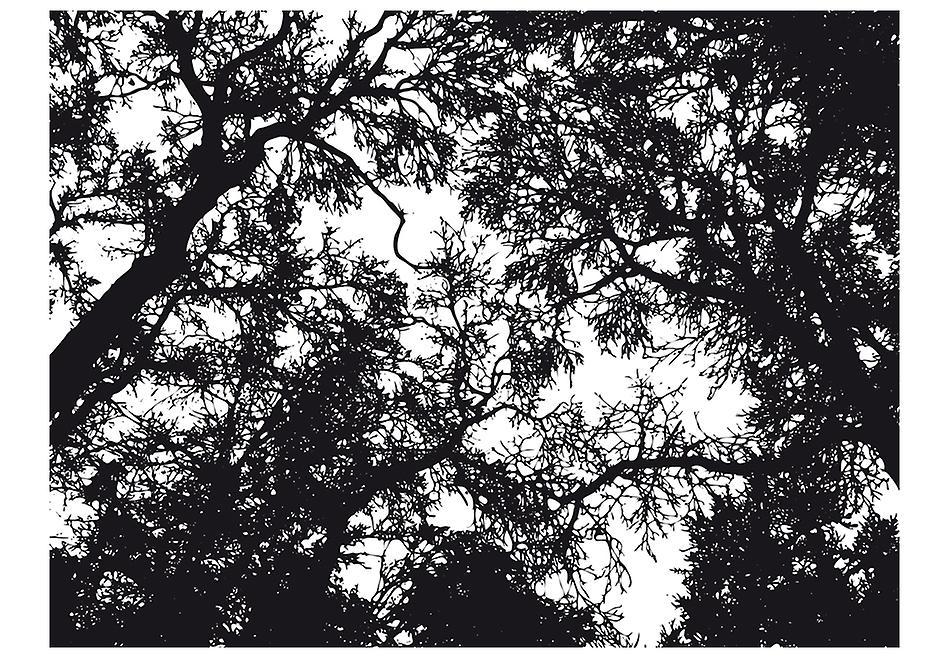 Wallpaper - Bleak forest