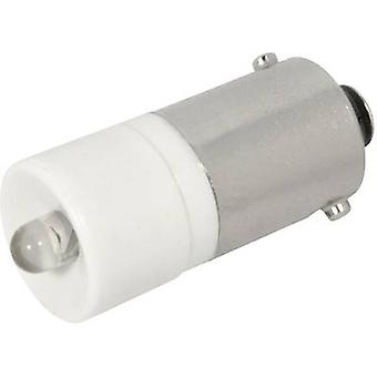 CML LED bulb BA9S Cold white 12 Vdc, 12 V AC 1200 mcd 1860225 W 3D