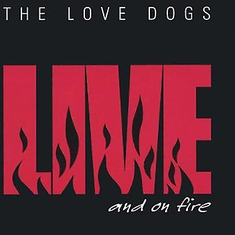 Love Dogs - Live & on Fire [CD] USA import