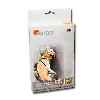 Nayeco Dog safety harness drive M (Dogs , Transport & Travel , Travel & Car Accessories)