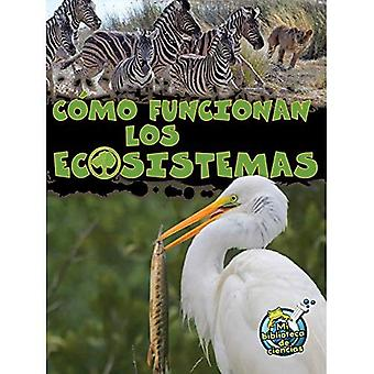 Como Funcionan Los Ecosistemas (How Ecosystems Work) (Mi Biblioteca de Ciencias 3-4 (My Science Library 3-4))
