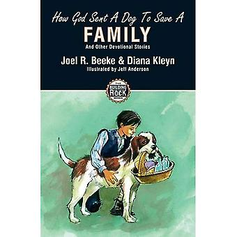How God Sent a Dog to Save a Family: And Other Devotional Stories (Building on the Rock)