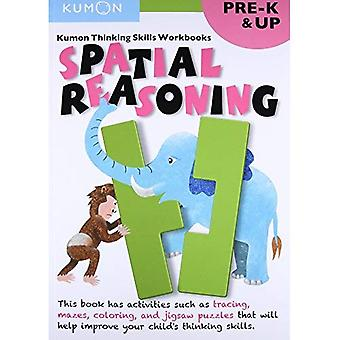 Spatial Reasoning (Thinking Skills Workbooks) (Kumon Thinking Skills Workbooks)