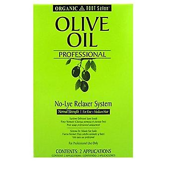 ORS Olive Oil Ors Olive Oil No-Lye Prof. Regular Twin Pack
