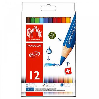 Fancolor de Caran d'Ache hydrosoluble crayons 12 Tin