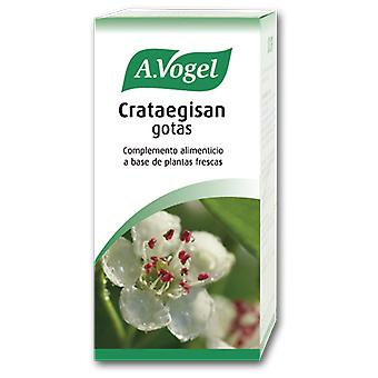 A.Vogel Gouttes Crataegisan 100Ml