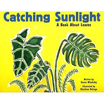 Catching Sunlight - A Book About Leaves by Susan Blackaby - Charlene D