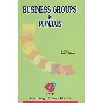 Business Groups in Punjab by K. N. S. Kang - 9788177080704 Book