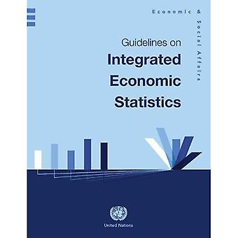 Guidelines on Integrated Economic Statistics (Studies in Mehtods, Series F)