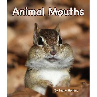Animal Mouths by Mary Holland - 9781628555523 Book