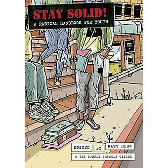 Stay Solid! - A Radical Handbook For Youth by Matt Hern - 978184935099
