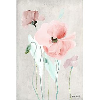 Soft Pink Poppies I Poster Print by Lanie Loreth